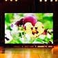 Светодиодные экраны для помещений / Внутренние LED экраны